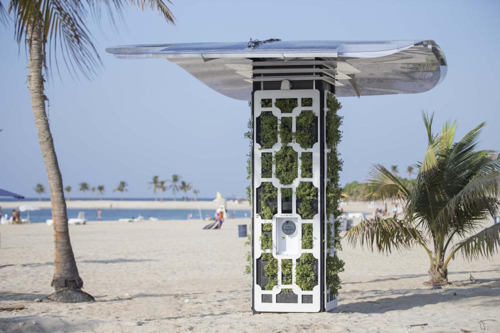 حديقة الممزر في دبي. (الرؤية)