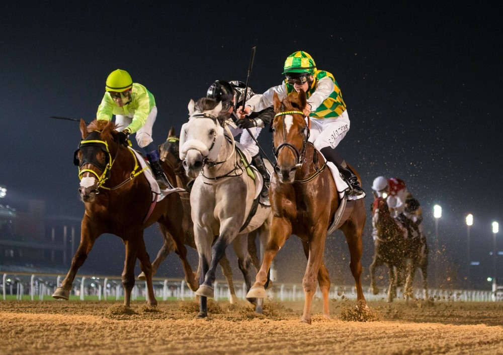 من سباق كأس آل مكتوم أمس الأول في دبي. (الرؤية)