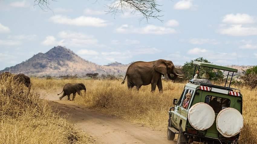 السفاري في أفريقيا