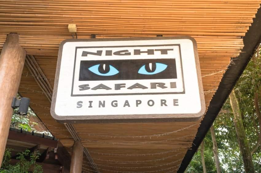 السفاري الليلي في سنغافورة .. تجربة تحبس الأنفاس