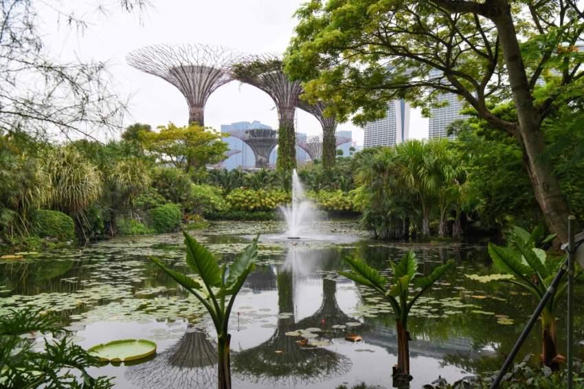الطبيعة الخضراء في سنغافورة، ويظهر خلفها الفندق الأشهر في سنغافورة مارينا باي