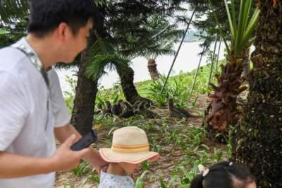 ابن و والده يتمتعان بمشاهدة كل بالماء في إحدى الحدائق في سنغافورة