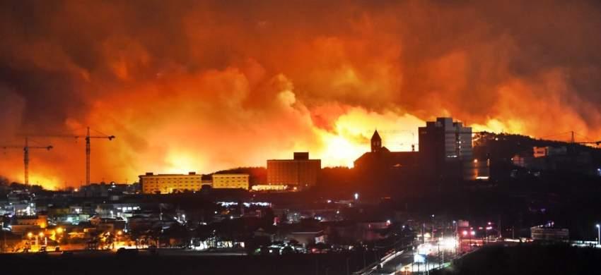 احتراق أكثر من 400 منزل و900 منشأة مواشي بسبب حرائق الغابات في كوريا الجنوبية