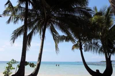 شاطئ في تايلاند