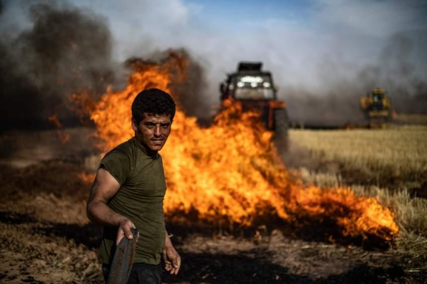حرائق في مزارع الحسكة على الحدود السورية التركية. (أ ف ب)