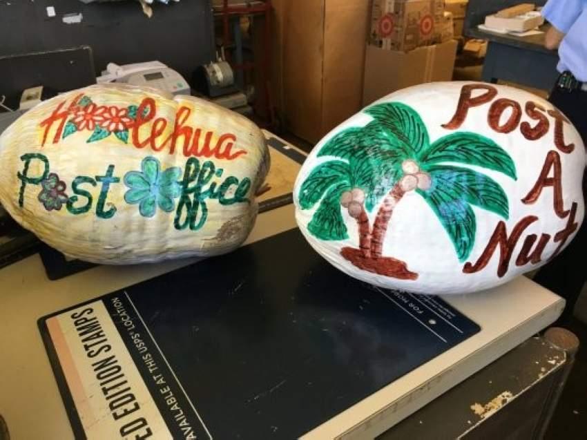 جوز الهند بدلاً من بطاقات البريد في هاواي