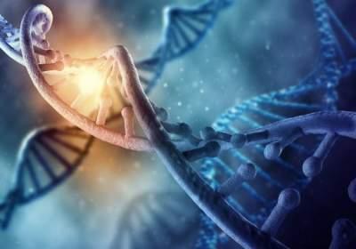 بعد 20 عام من السجن .. الحمض النووي يبرئ رجل أمريكي من تهمة القتل