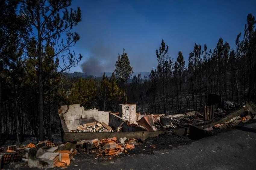 تمت السيطرة ليل السبت على حريقين آخرين في الغابات. (أ ف ب)