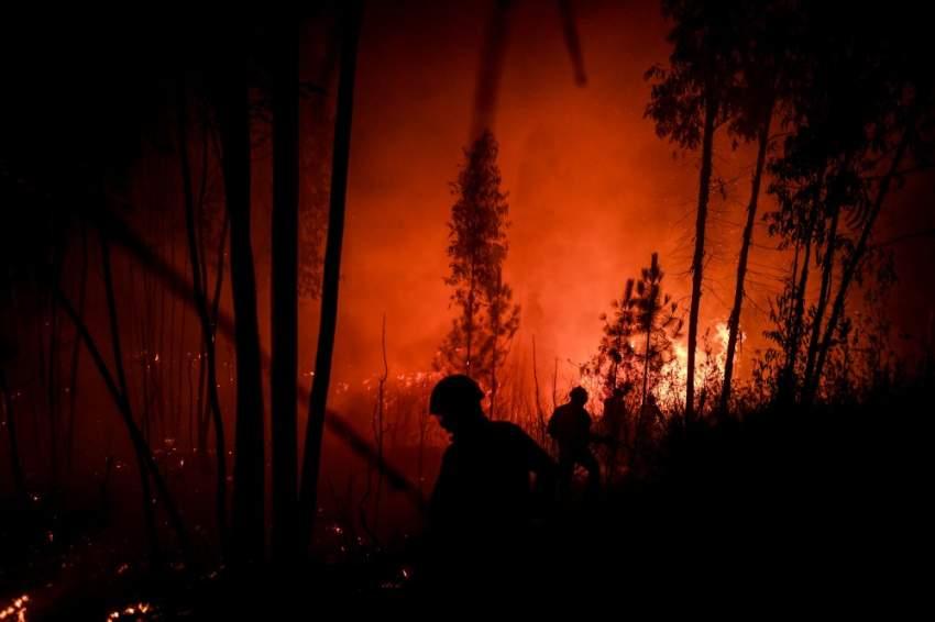 أكثر من 1100 رجل إطفاء و400 آلية يعملون على مكافحة ألسنة اللهب، كما ورد على موقع الدفاع المدني. (أ ف ب)