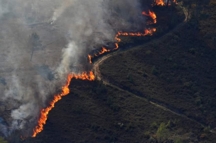 كانت حرائق الغابات التي تؤجهها رياح قوية تقدمت بعد ظهر السبت على ثلاث جبهات في مناطق يصعب الوصول إليها في كاستيلو برانكو على بعد مئتي كيلومتر شمال لشبونة. (رويترز)