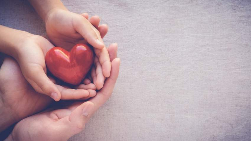 5 أطعمة صحية مفيدة جداً لصحة القلب