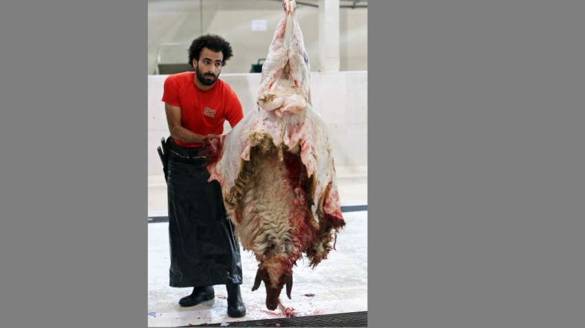 Egyptian butcher Mohammad Ibraheem, aged 27, work at a slaughterhouse in Kuwait City on August 13, 2019, during the third day of Eid al-Adha. - Mohammed is famous for his resemblance with Egyptian football player Mohammed Salah, and people from around Kuwait come to meet him and take pictures with him. Known as the