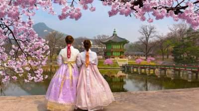 كوريا الجنوبية من بين الوجهات التي يُنصح بزيارتها في سبتمبر