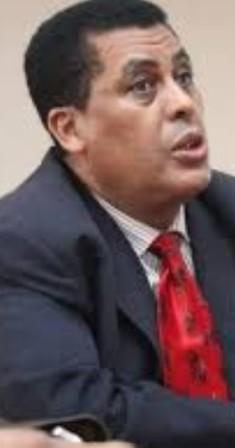 السفير الاثيوبي في القاهرة دينا مفتي ( أرشيفية)