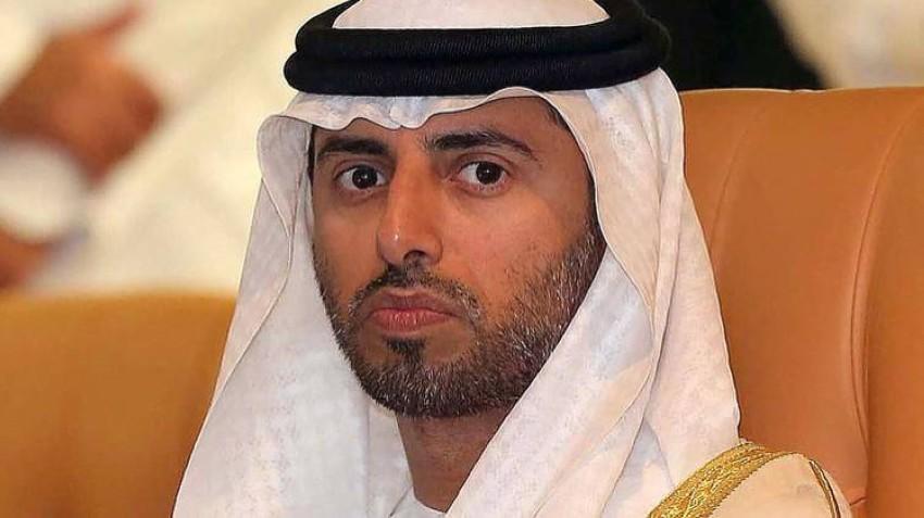 وزير الطاقة والصناعة سهيل بن محمد فرج فارس المزروعي. (الرؤية)