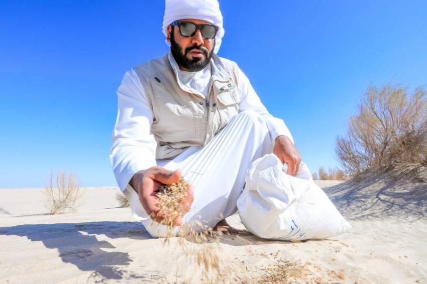 أبوظبي تنثر البذور في 4 مواقع مختلفة داخل إمارة أبوظبي