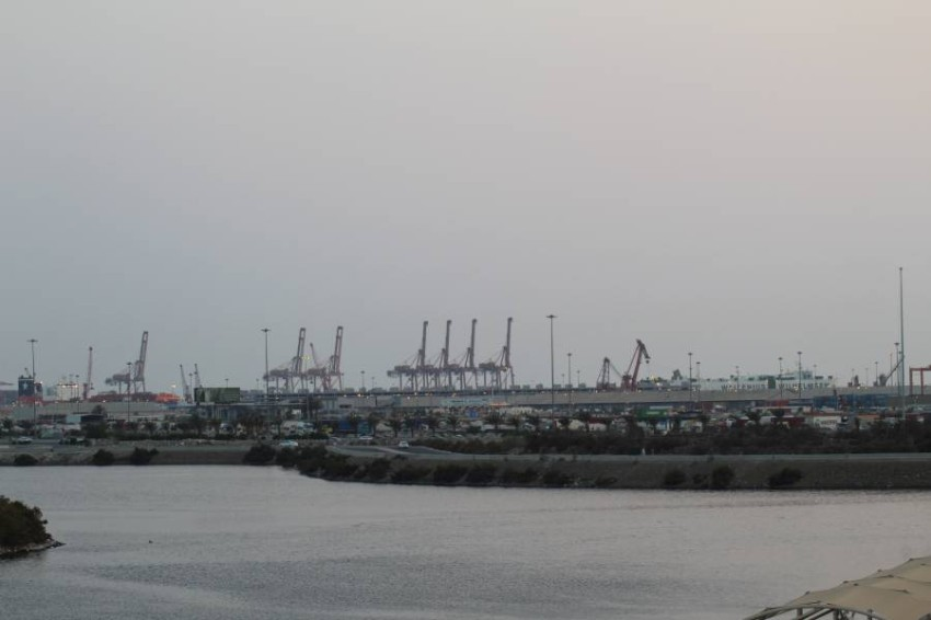 ميناء جدة. (الرؤية)