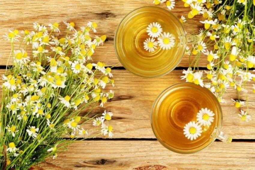 شاي البابونج.