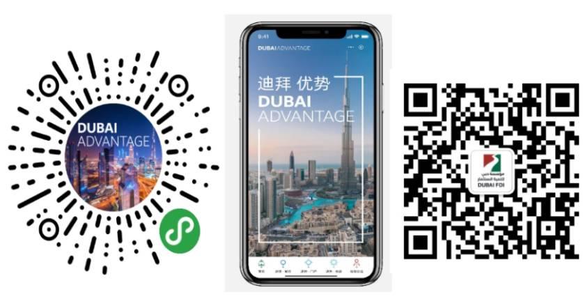 دبي لتنمية الاستثمار تطلق خدمات رسمية للمستثمرين الصينيين أخبار