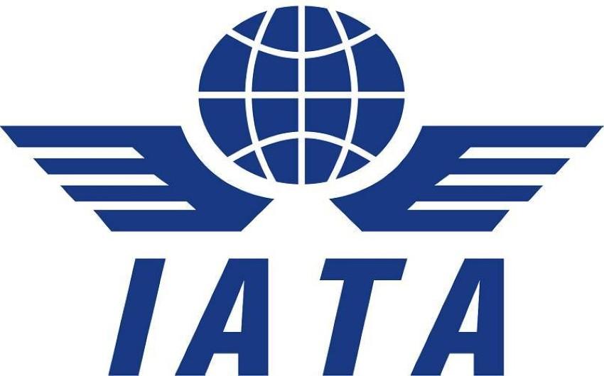 «إياتا» تدعو حكومات الشرق الأوسط وأفريقيا التدخل العاجل لمساعدة شركات الطيران.