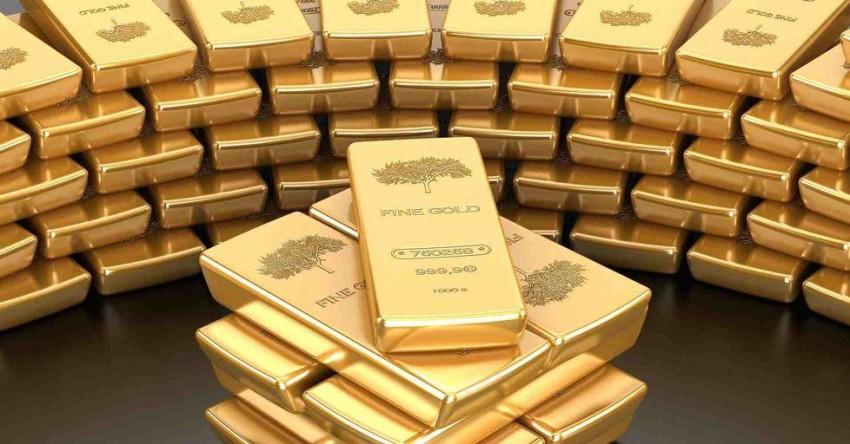عنف قاعدة البيانات عجز سعر الذهب سبيكة Dsvdedommel Com