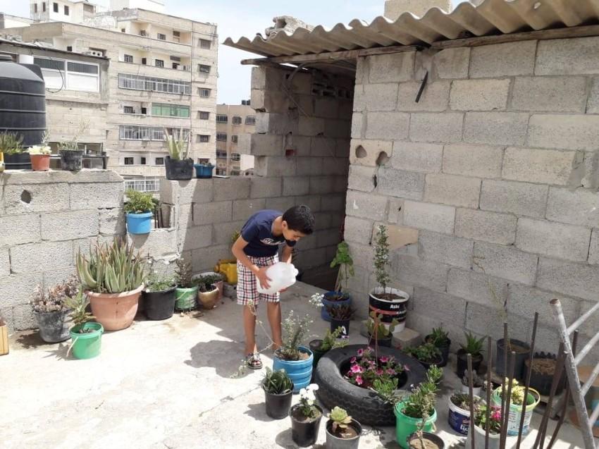 الطفل محمد يقوم بسقاية الورد في حديقته. (الرؤية)