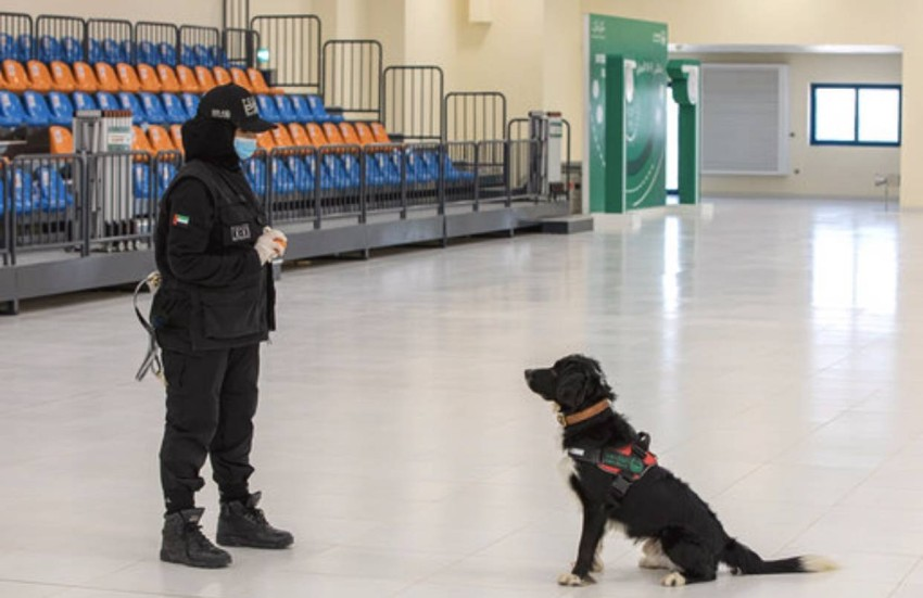 تدريب الكلاب pdf