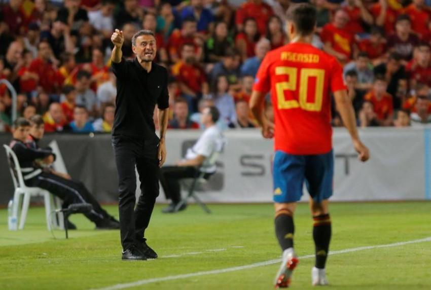 مدرب إسبانيا لويس إنريكي. (رويترز)