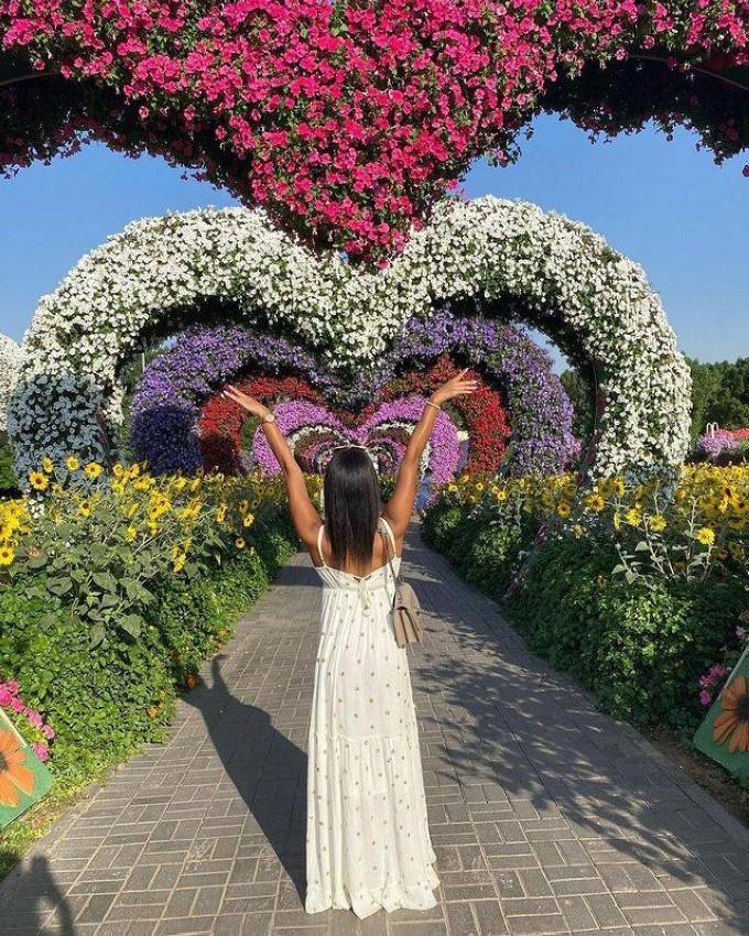 حديقة المعجزة