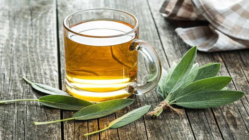مشروب الميرمية من بين الأعشاب الشائعة في فلسطين وبلاد الشام