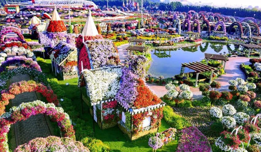 الطبيعة بحديقة دبي المعجزة.