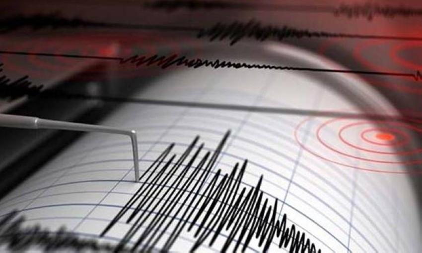 الزلزال لم يسفر عن إنذار باحتمال حدوث تسونامي. (رويترز)