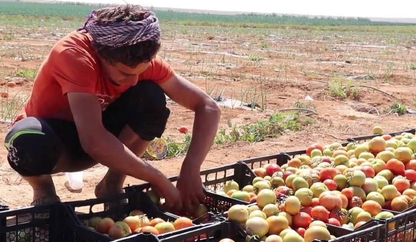 يعمل الأردن على توفير فرص عمل للاجئين لضمان حياة كريمة. (أرشيفية)