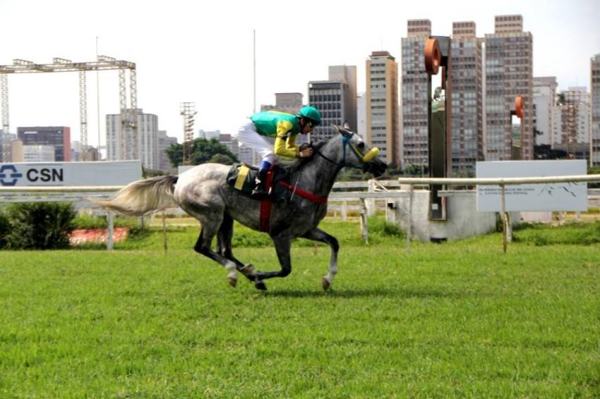 كلابتون تألف في البرازيل. (من المصدر)