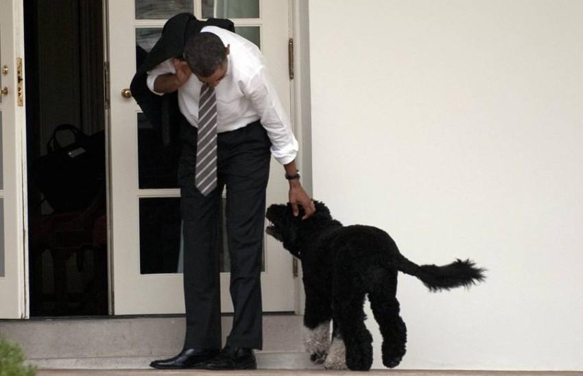 «بو» مكث في البيت الأبيض طوال 8 سنوات. (أ ف ب)