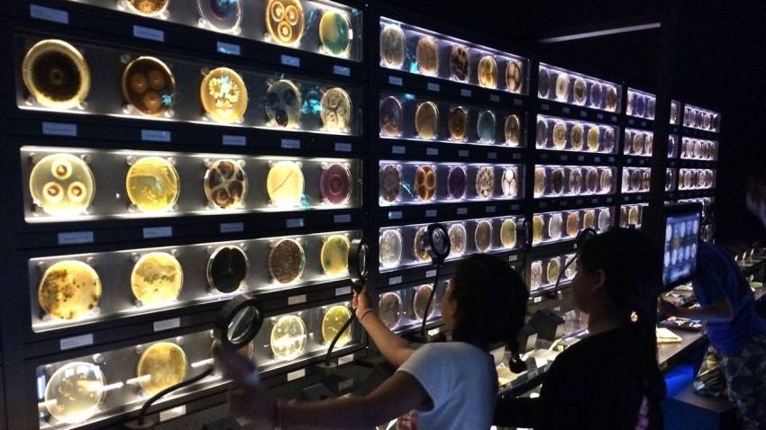 متحف ميكروبيا هولندا.