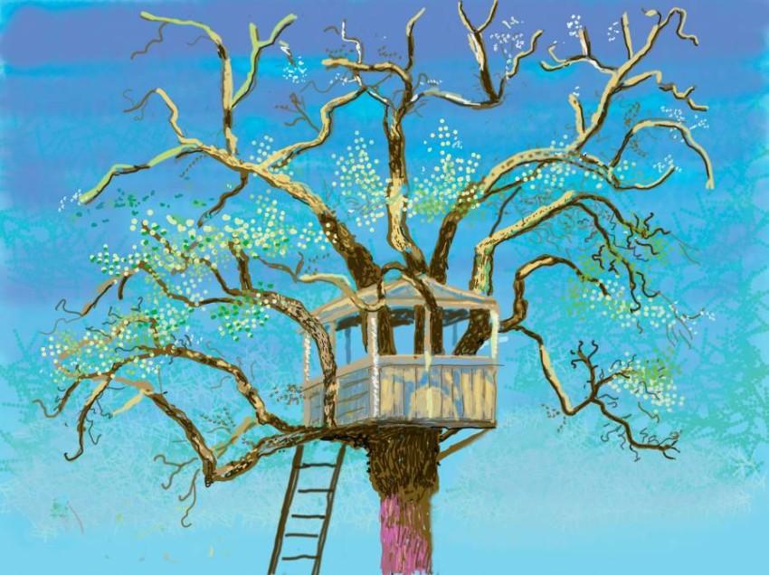 بيت أشجار