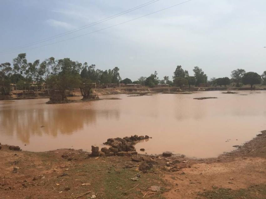 دراسة عينات دم لأطفال من مجموعتي «جوين» و«فولاني» العرقيتين ببوركينا فاسو. (من المصدر)