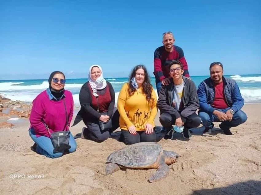 إعادة السلاحف لبيئتها الطبيعية هو أساس تكوين فريق خاص مهتم بانقاذ السلاحف