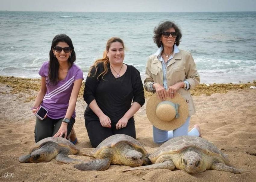 فريق مي لإنقاذ السلاحف