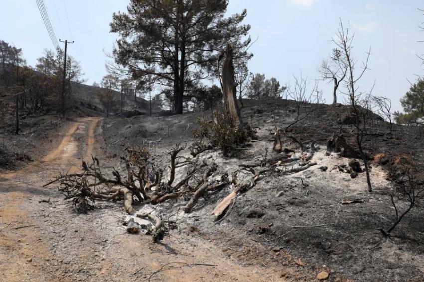 قبرص تعلن السيطرة على حرائق الغابات - EPA