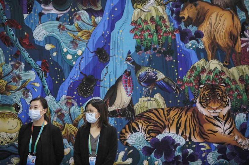 المركز الإعلامي لمؤتمر الأمم المتحدة للتنوع البيولوجي في كونمينغ. (أ ف ب)